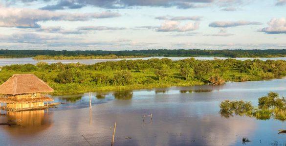 Amazone: 10 dingen die je vast niet wist 1