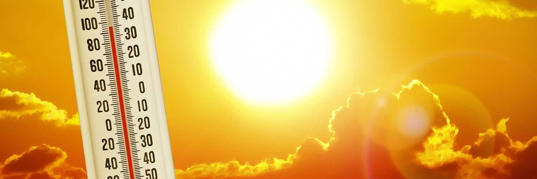 Banner Klimaat Temperatuur