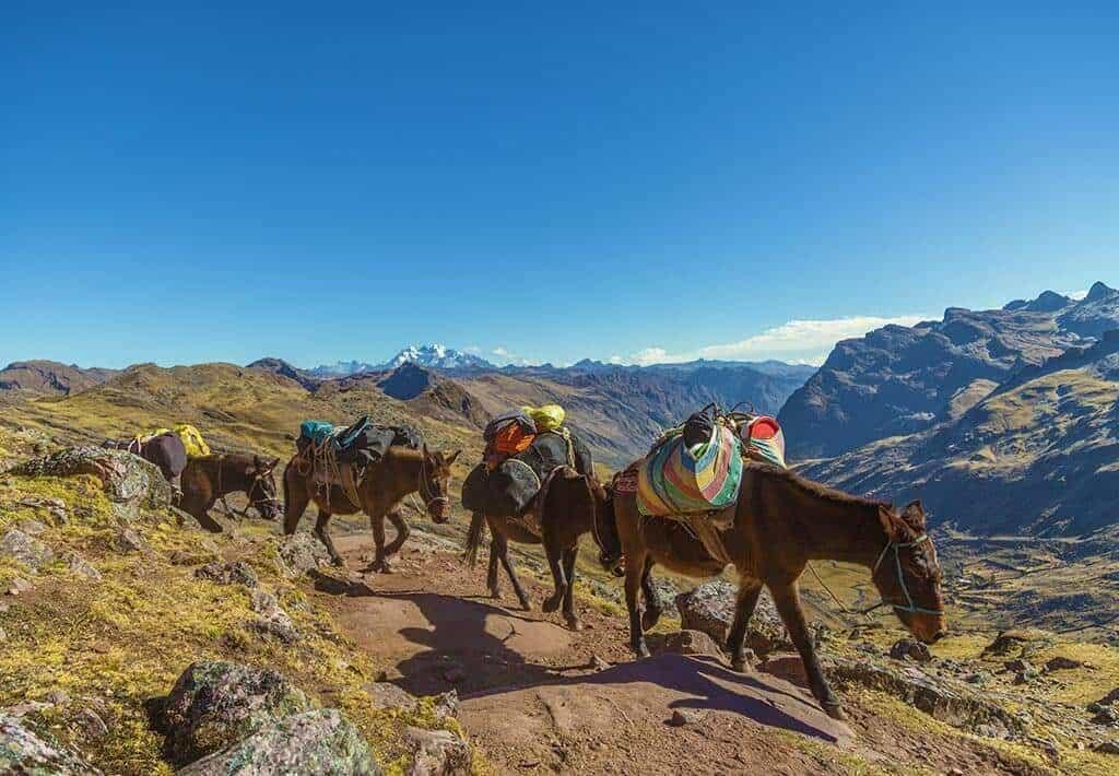 Machu Picchu - Lares Trail