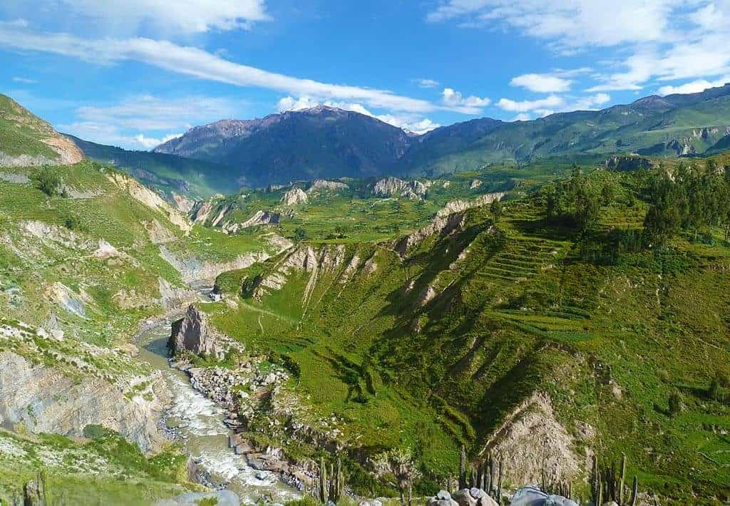Colca Canyon - Arequipa